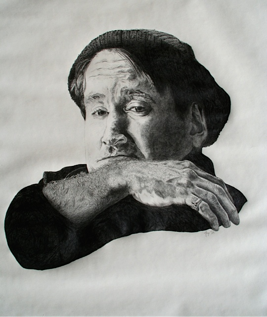 Robin Williams-jaymicrookart